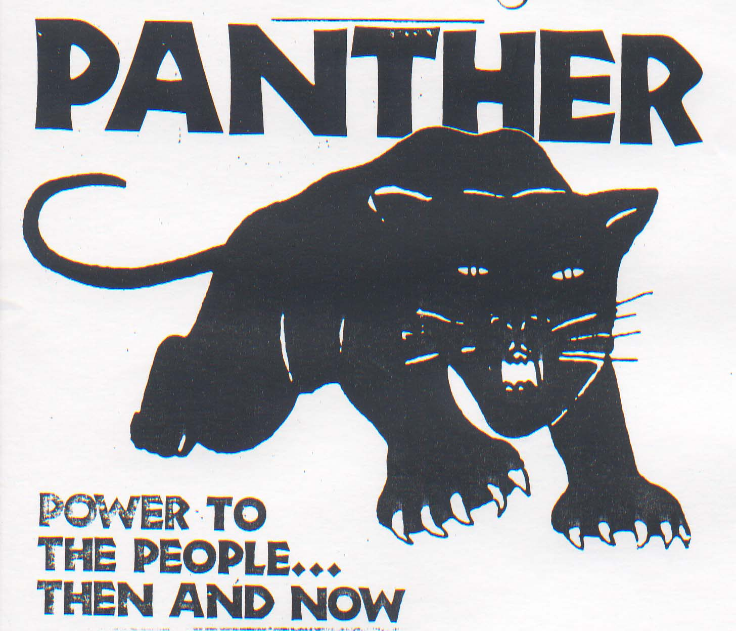 the hierarchy of the black panther in the global ecosystem The hierarchy of the black panther in the global ecosystem 445 words 1 page an essay on african-americans and the black panther 2,091 words 5 pages company.